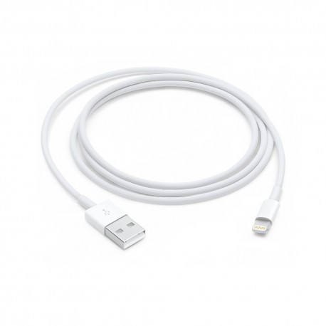 iPhone 5 USB to Lightning Data Cable in White